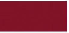 bss logo2018
